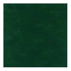 Coprimacchia in tnt verde